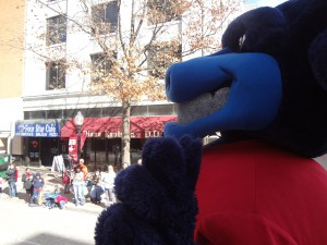 Toro riding in the parade.