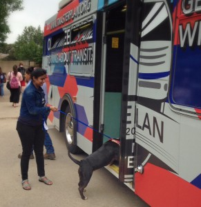 Student enters bus with dog.